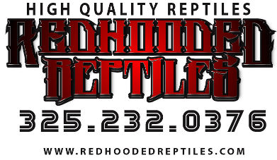 Redhooded Reptiles